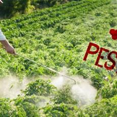 Pesticides et Cancer, les deux inséparables
