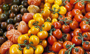 The rising popularity of Organic food