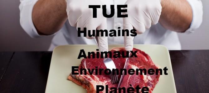 Manger de la viande TUE, humains, animaux, environnement et planète(Parution)